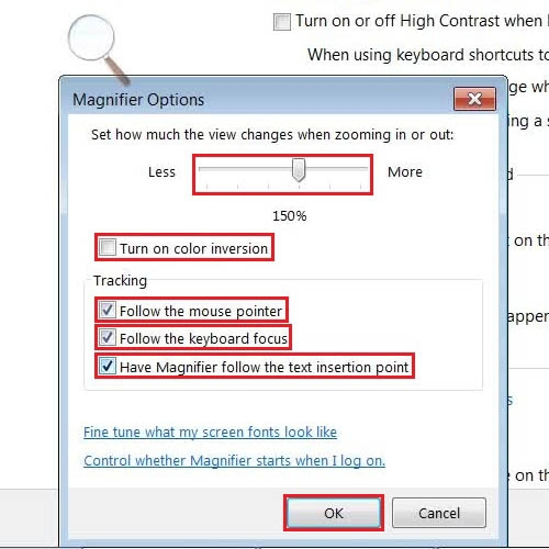 Change the magnifier options
