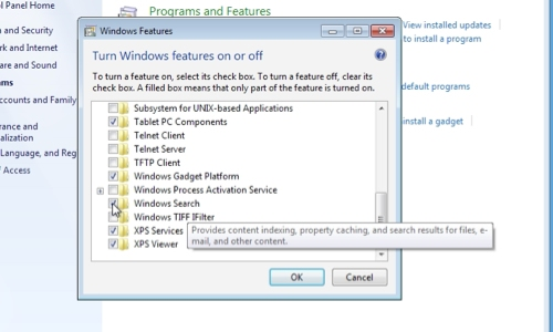 Disable Windows Search
