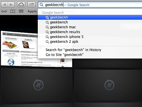 Enter geekbench in the search field