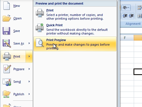Open the Print Preview dialogue