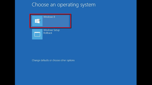 Selecting Windows 8 as the operating system