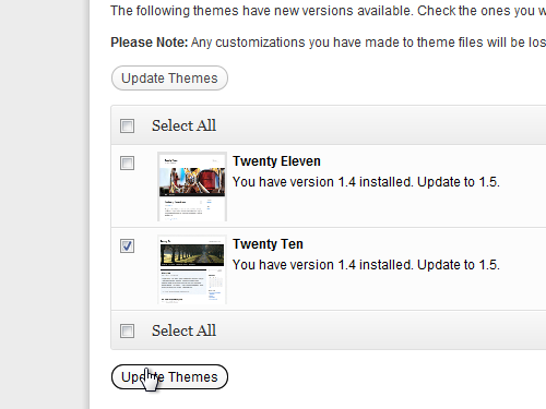 Click the Update themes