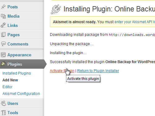 Click on AActivate Plugin