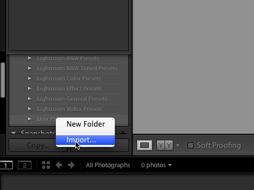 Import the downloaded preset in the Lightroom