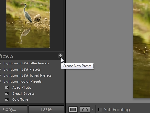 Create new preset with specified properties