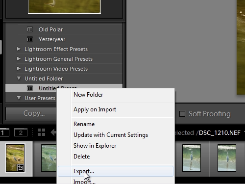 Export the created preset