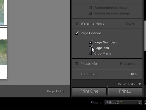 Select the page options