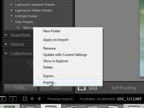 Import the new preset in the collection