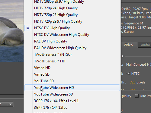 Choose the YouTube Widescreen HD profile