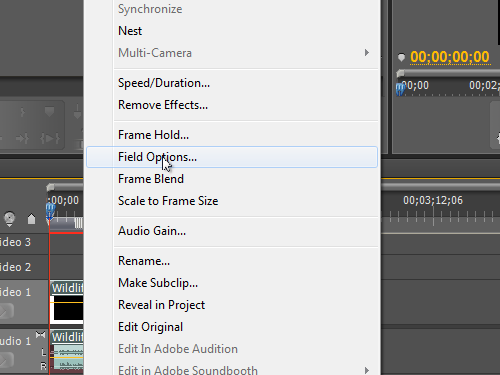 Open the Field options dialog box