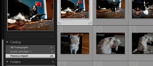 select the photos you want to export