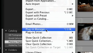 Select the plugin manager