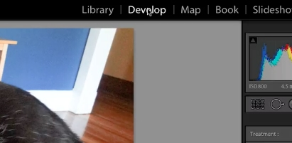 open a photo within the develop module