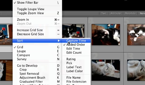 click on view > sort > capture time in the menu