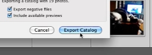 Click export catalog to export