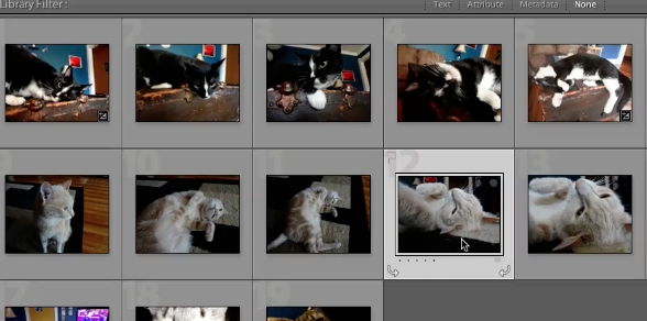 you can't necessarily save changes that you do to photos, but there is a trick around this