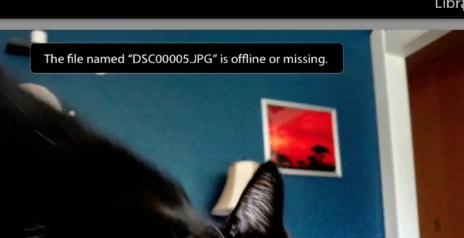 Lightroom may tell you the file is offline or missing