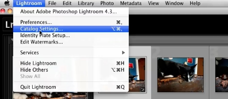 click on Lightroom and Catalog Settings...