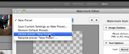 "click on the pulldown in the left corner and click ""delete presets"""
