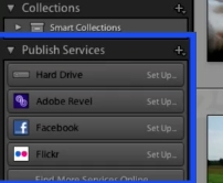 locate the Publish Services panel on the left side
