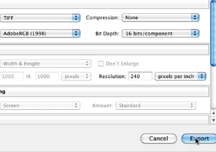 choose your preferred settings and click on export