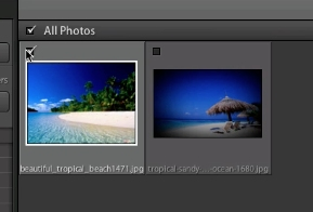 check the box next to each photo you want to import