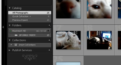 Export lightroom to flickr by clicking on the Library section of Lightroom