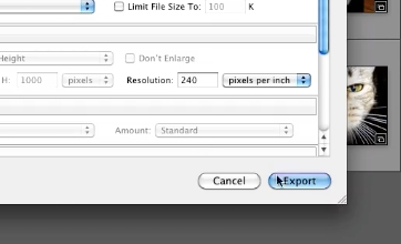 select your preferred settings and click on Export