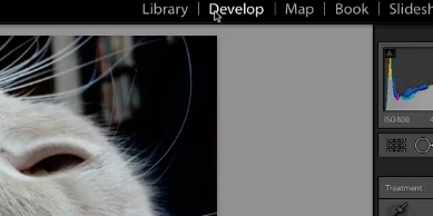 choose photo and click on develop tab