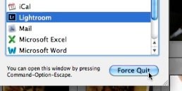 Select Lightroom out of the list of programs and click force quit