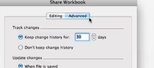 Click the Advance tab in the share workbook window