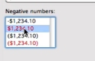 select how negative numbers will be displayed