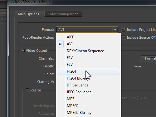 Choose the output video format