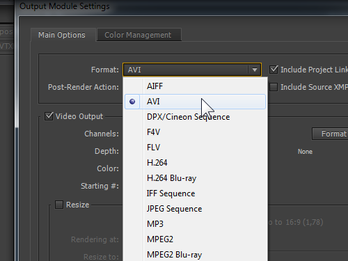 Choose output video format