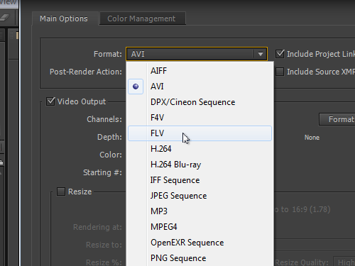 Select the format of the output file