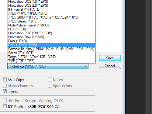 Select the file format
