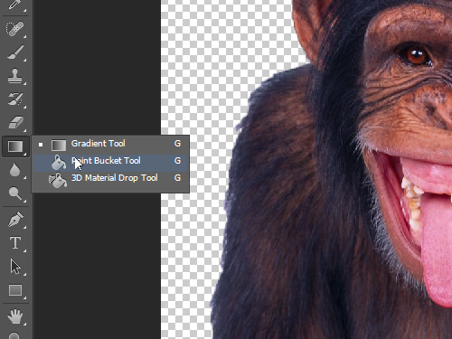 Choose the Paint Bucket Tool to fill the new layer