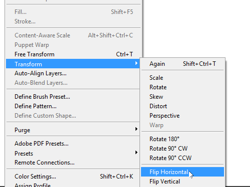 Flip the selected layers horizontally