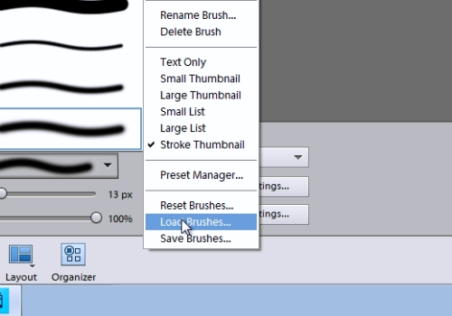"press ""Load brushes"""