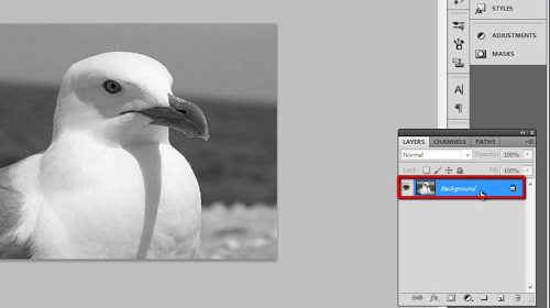 Creating an adjustment layer from the background image