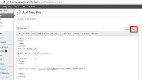Inserting the JavaScript Into the Post