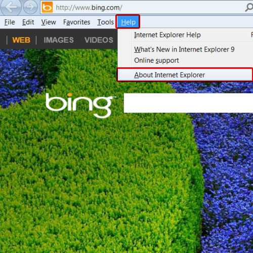 Use the menu bar to view IE version