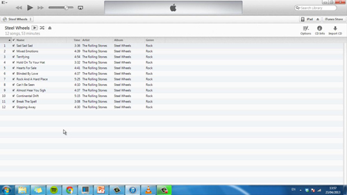 The iTunes interface