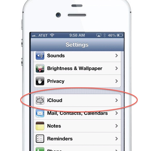Find the iCloud button in your Settings App