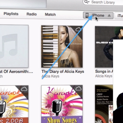 iPhone Button to get device info in iTunes