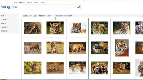 Searching Bing for images