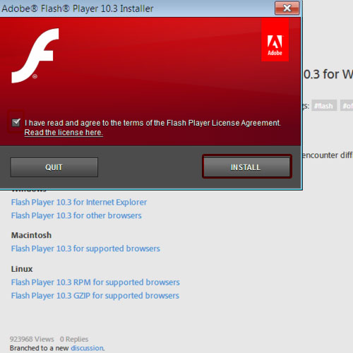Agree to the Flash Player terms & conditions