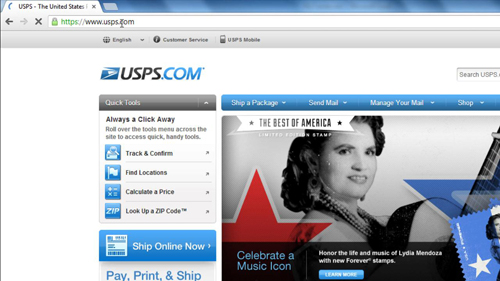 Visiting the USPS site