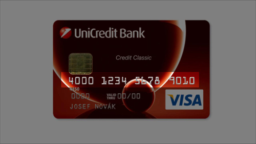 The 16 digit credit card number