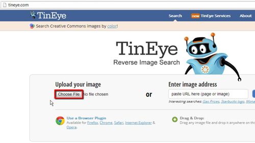 Choosing the file to upload to TinEye